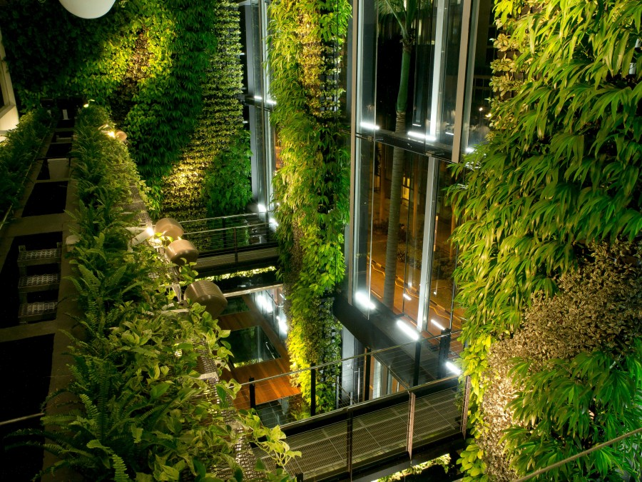 Is Biophilic Design What's Missing in Your Office Project ...