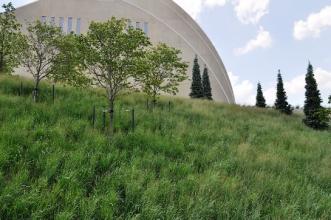 Green-roof-wall-WGIC2014