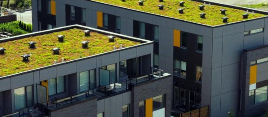 green-roof-market-UK