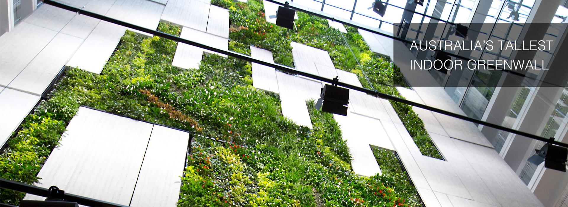 Fytogreen Aust Pty Ltd Green Roofs Australasia
