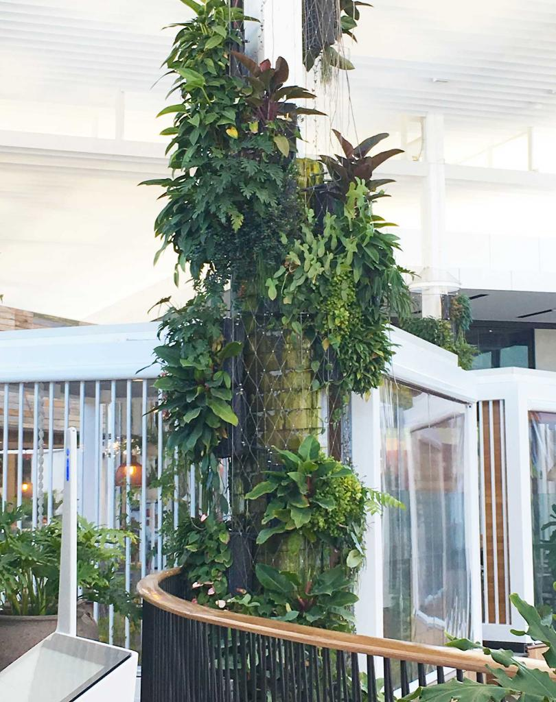 Images: Fytogreen, In Conjunction With Tensile, Created A Relaxing Leafy  Atmosphere At Warringah Mall In NSW, With Aa Series Of Striking Curved  FytoWall ...