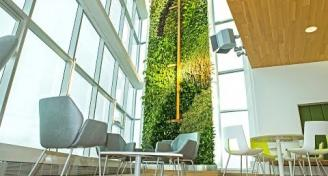 Quebec Highrise Living Wall