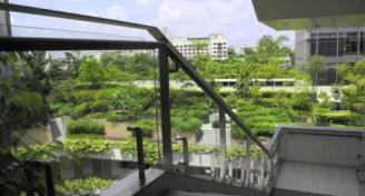 Overview of Singapore Green Infrastructure