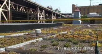 Columbia Uni NYC: Weighing the benefits of reducing heat island and stormwater runoff.