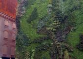 Caixa Madrid Jardin Vertical