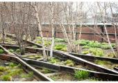 Highline (New York, USA) (Source: www.urbantimes.co)
