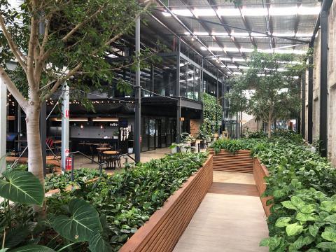 Vertical Garden, Fytogreen vertical gardens, australia green wall, green walls, green wall australia, green façade, green façade australia, fytowall, fytowall australia, Breathable Walls, Breathable Greenwalls Australia, greenwalls, living wall