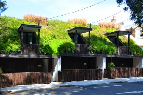 Three homes unified by a continuous sloped green roof.