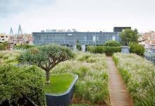 M-Central-Rooftop-Garden-Pyrmont-Sydney