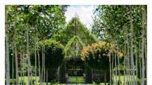 Living green church New Zealand