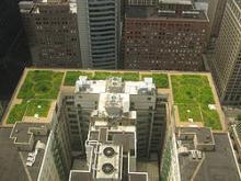green infrastructure