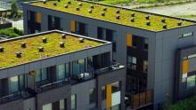 green-roof-market-UK