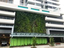 Ivy Apartments, Green Walls, Fytogreen, Vertical Garden, Fytowall