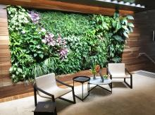 Fytowall by Fytogreen, Greenwall, Melbourne Residences, Vertical Garden, Sustainable, Fytogreen, Green Wall, Green Roof, Greenroof, Award Winning, Aria Property Group, Extensive Roof Garden