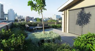 Green roof Redfern by Evolvement PL Robert Griffith 0468 787 071